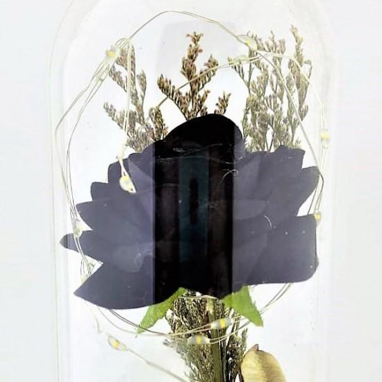 Işıklı Siyah Gül Tasarımlı Fanus