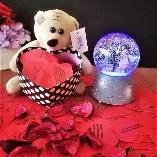 Işıklı Kar Küresi ve Pelluş 365 Aşk Sözleri Ayıcık set