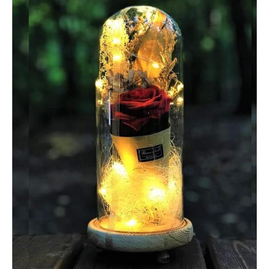 Dekoratif Cam Fanus Işıklı  Gül  (model 1 )